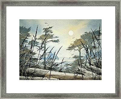 Misty Island Dawn Framed Print
