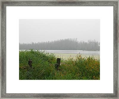 Misty Lake Framed Print by Marilyn Smith