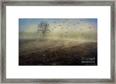 Misty Meadows Framed Print