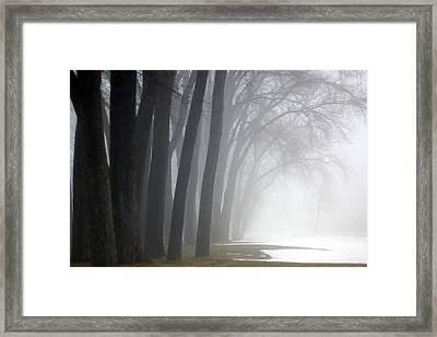 Misty Moments Framed Print