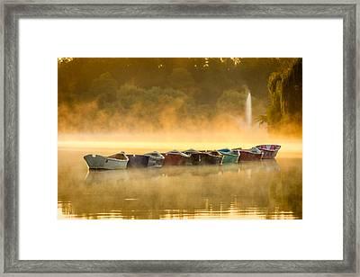 Misty Mooring Sunrise Framed Print by Chris Bordeleau