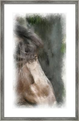 Misty Morn Framed Print by Elzire S