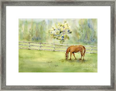 Misty Morning Framed Print by Amy Kirkpatrick
