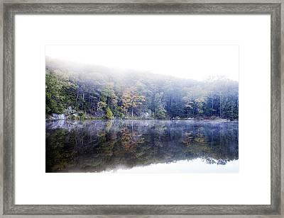Misty Morning At John Burroughs #2 Framed Print