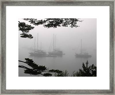 Misty Morning At Northeast Harbor Framed Print by Juergen Roth