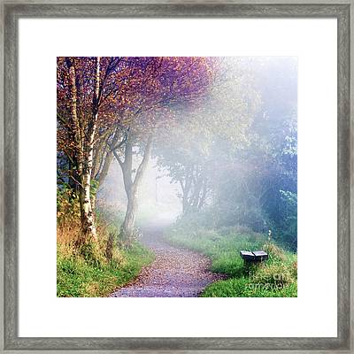 Misty Morning At Sutton Bank Framed Print by Janet Burdon