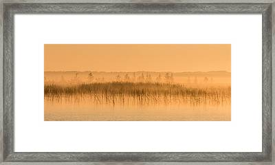 Misty Morning Floating Bog Island On Boy Lake Framed Print