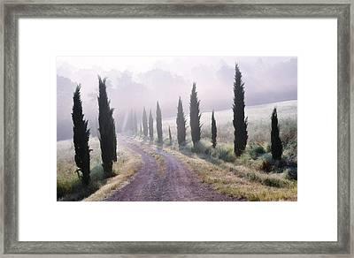 Misty Morning In Tuscany Framed Print
