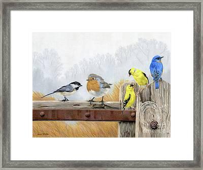 Misty Morning Meadow Framed Print