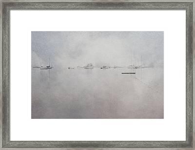Misty Morning On The Coast - Acadia National Park - Maine Framed Print by Joann Vitali