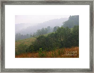 Misty Morning On The Farm Framed Print by Thomas R Fletcher