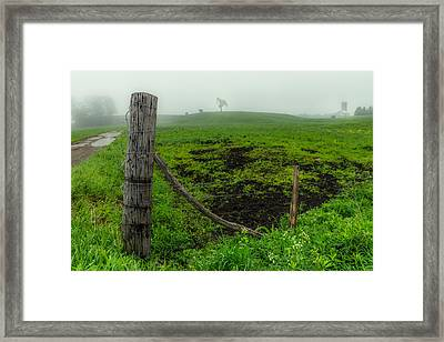 Misty Morning Pasture Framed Print