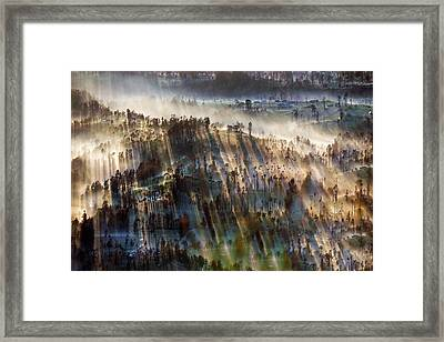 Framed Print featuring the photograph Misty Morning by Pradeep Raja Prints