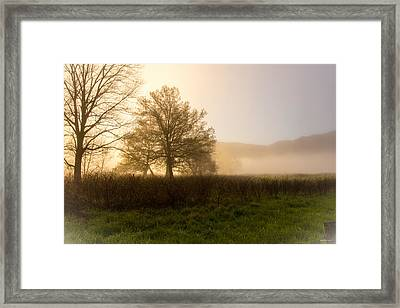 Framed Print featuring the photograph Misty Morning by Rebecca Hiatt