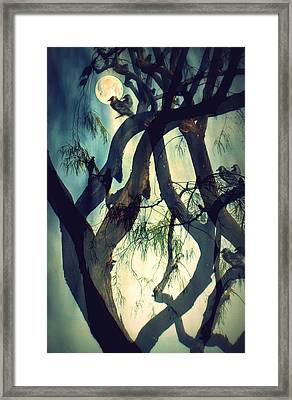 Misty Morning-sold Framed Print