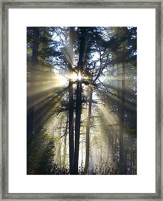 Misty Morning Sunrise Colorful Framed Print by Crista Forest