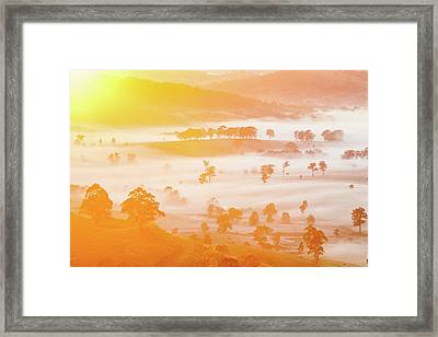 Misty Mornings Framed Print by Az Jackson