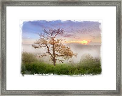 Misty Mountain Framed Print by Debra and Dave Vanderlaan