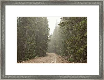 Framed Print featuring the photograph Misty Road by James BO Insogna
