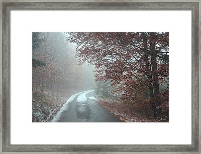 Misty Road. Series In Mysterious Woods Framed Print by Jenny Rainbow