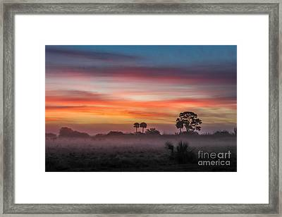 Misty Sunrise Framed Print by Liesl Walsh