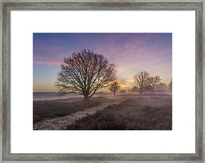 Misty Sunrise Framed Print