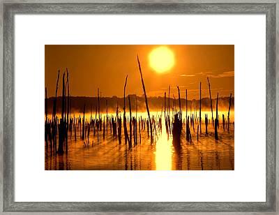 Misty Sunrise On The Reservoir Framed Print