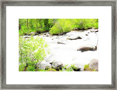 Misty Waters Framed Print