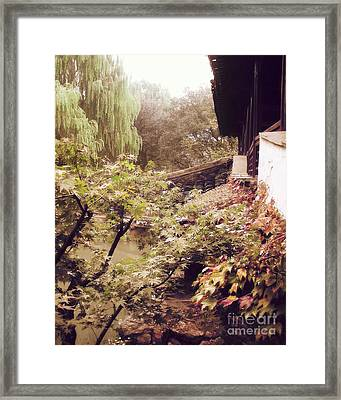 Misty Willows Framed Print