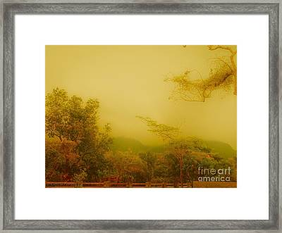 Misty Yellow Hue- El Valle De Anton Framed Print