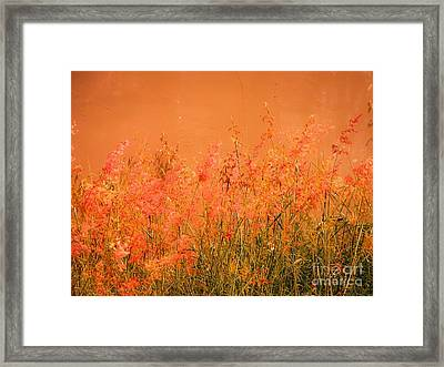 Misty Yellow Hue- Pink Blooms Framed Print