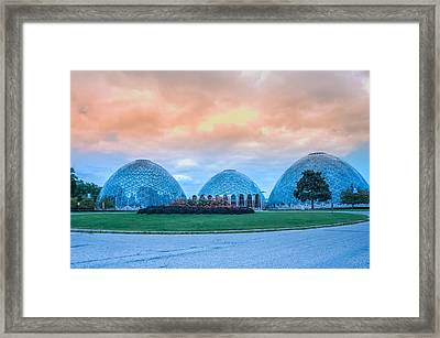 Mitchell Park Conservatory,the Domes Framed Print by Art Spectrum