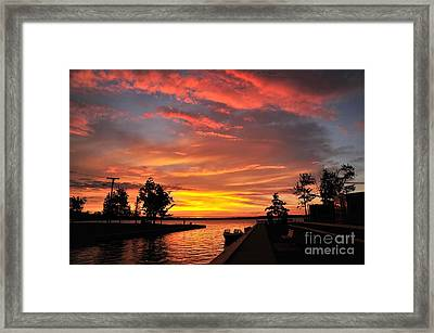 Mitchell State Park Cadillac Michigan Framed Print by Terri Gostola