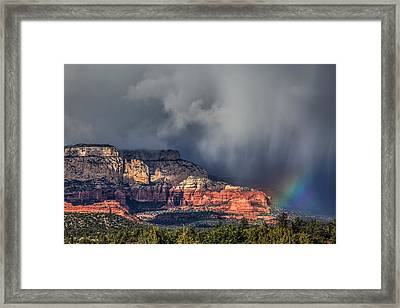 Mixed Bag Framed Print by Donna Kennedy