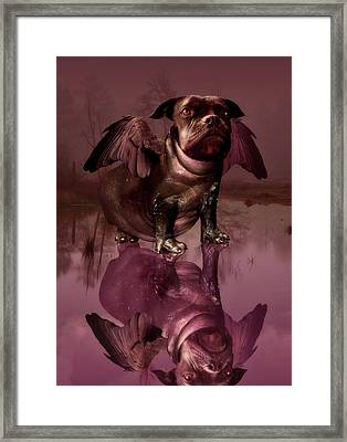 Mixed Breed Framed Print