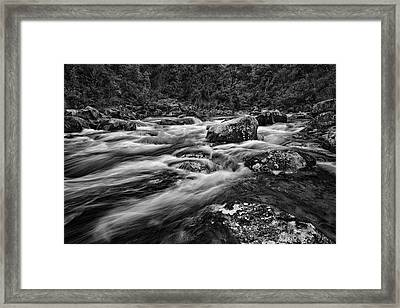 Mixed Emotions Framed Print by Mark Lucey
