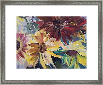 Mixed Sunflowers Framed Print