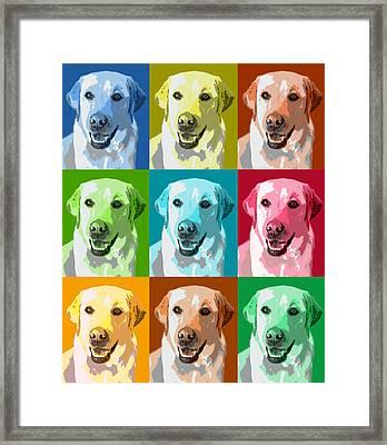 Golden Retriever Warhol Framed Print