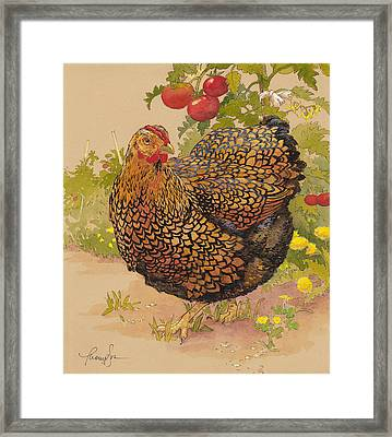 Miz Ruthie Wyandotte Framed Print by Tracie Thompson
