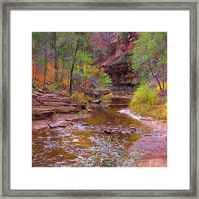 Mn1212 Framed Print by Mikes Nature
