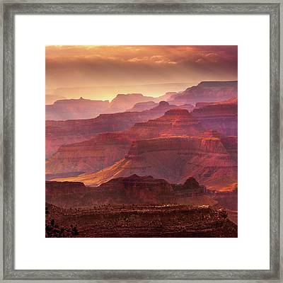 Mn1733 Framed Print by Mikes Nature