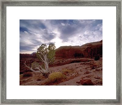 Moab Dreams Framed Print by Kim Blumenstein