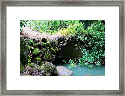 Moanalua Valley Framed Print by Jackie Dorr