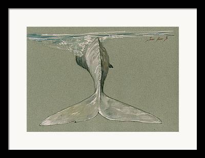 Nautical Decor Framed Prints