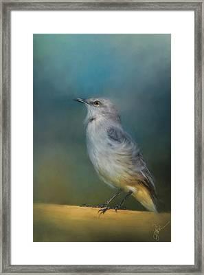 Mockingbird On A Windy Day Framed Print by Jai Johnson