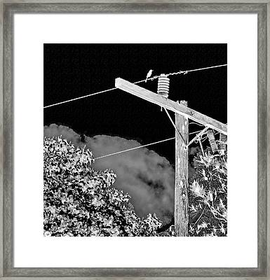 Mockingbird On A Wire Framed Print