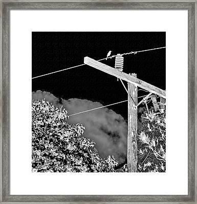 Mockingbird On A Wire Framed Print
