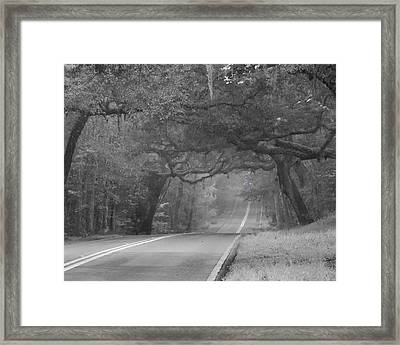 Modern Day Sleepy Hollow Framed Print