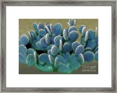 Modern Prickly Pear Framed Print by Linda Parker