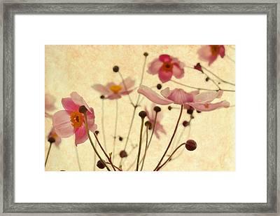 Modern Vintage Blossoms Framed Print by Georgiana Romanovna